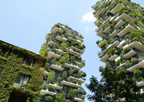 Green Building Certifications Rising in International Property Markets, Globally